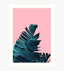 Banana Leaves, Tropical Leaf Print, Pink and Blue Art Print