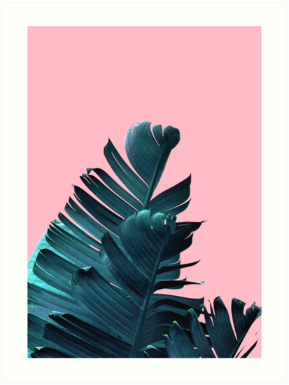 Quot Banana Leaves Tropical Leaf Print Pink And Blue Quot Art