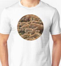 Turkey Tail Shelf Fungus Unisex T-Shirt