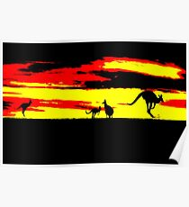 Kangaroos silhouettes at Sunset Poster