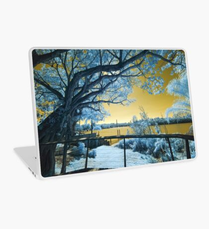 The Fig Tree and the Eleanor Schonell Bridge Laptop Skin