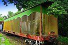 Circus Train by Bob Moore