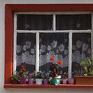 Ein Fenster von rasim1