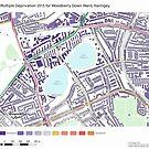 Multiple Deprivation Woodberry Down ward, Haringey by ianturton