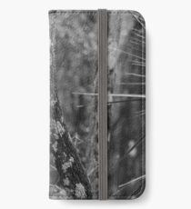 Steadfast Legend iPhone Wallet/Case/Skin