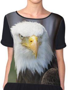 Beautiful north american bald eagle. Chiffon Top