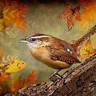 Wren in Autumn by Bonnie T.  Barry