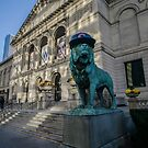 Art Institute Lion has Cubs to Celebrate Chicago Cubs world series victory by Sven Brogren
