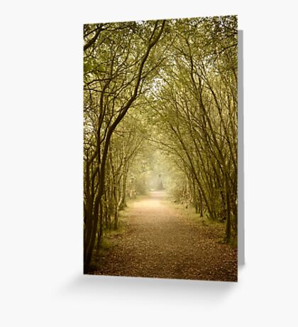 Morning Walk Greeting Card