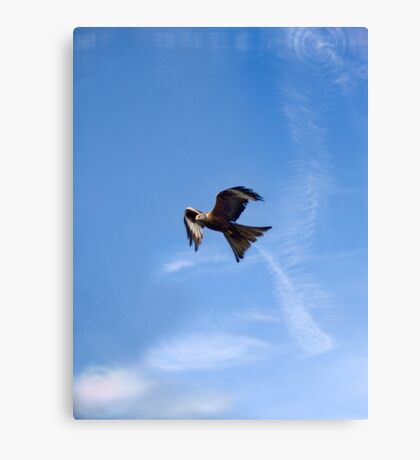 Of Kites and Chemtrails Canvas Print