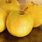 Apples by Jill Ferry