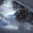 Puddle by Elizabeth  Lilja