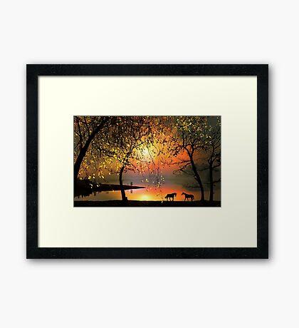 At The Sunset Framed Print