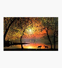 At The Sunset Photographic Print