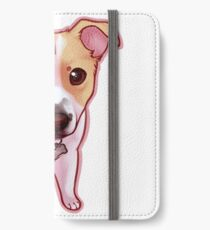 Ginger iPhone Wallet/Case/Skin