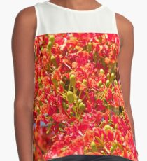 Poinciana blossoms and buds  Contrast Tank
