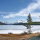 Maligne Lake nr. Jasper Canada by AnnDixon