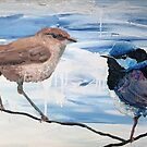 Wren and Husband by Steve Campbell