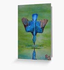 Kingfisher Diving Greeting Card