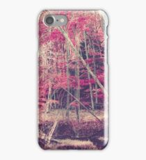 Rasberry iPhone Case/Skin