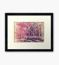 Rasberry Framed Print