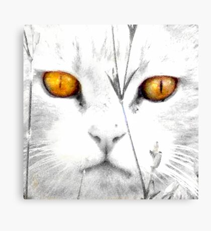 CC Serenity (Always in my memory) Canvas Print