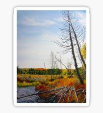 Autumn Swamp Sticker