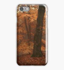 Misty Woods iPhone Case/Skin