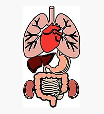 My Organs Photographic Print