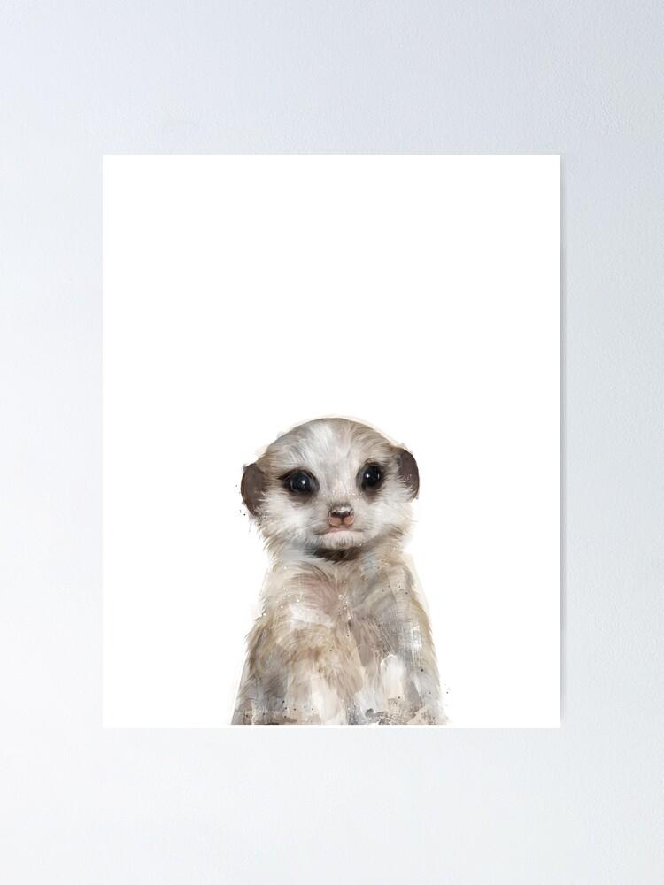 Alternate view of Little Meerkat Poster