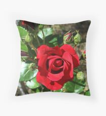 Sympathy rose and ten buds Throw Pillow