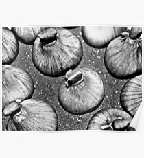 STANDING ONIONS!!! Food in B&W  Poster