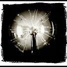 Tesla Ball by Imago-Mortis