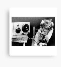 Jack the headphone cat Canvas Print