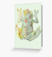 Glass Frog Menagerie Greeting Card