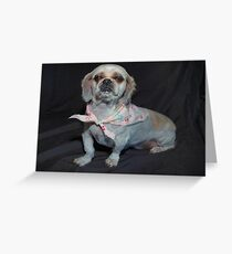 Our Annie-Leigh Greeting Card