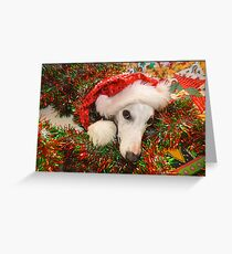Christmas Whippet Greeting Card
