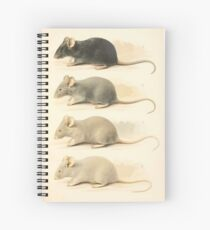 Vintage Mouse Scientific Illustration Spiral Notebook