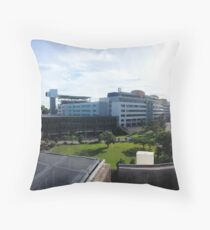 Brisbane's PA Hospital Throw Pillow