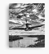 Low Altitude Flight Canvas Print