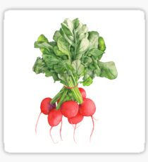 Ravishing Radishes Sticker