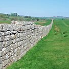 Hadrian's Wall by Arie Koene