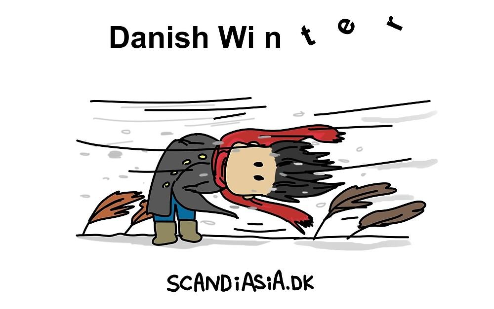 Danish Winter by scandiasia
