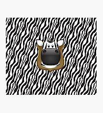 Zoo animals wildlife - Zebra Photographic Print