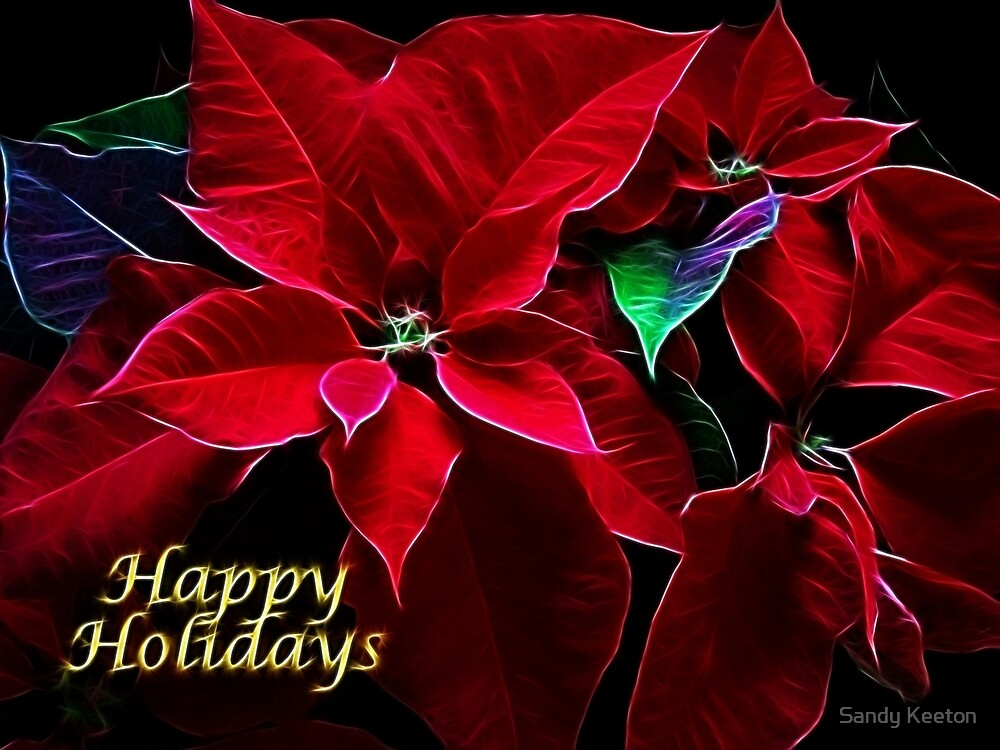 Poinsettia by Sandy Keeton