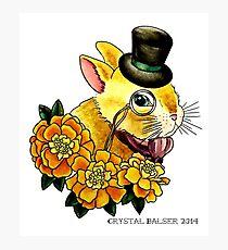 Top Hat Bunny Photographic Print