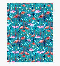 beautiful pattern lovers flamingo Photographic Print