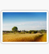 Rural wheat field view Sticker