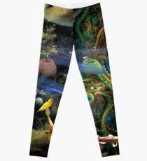 The History of the Bioluminoidal Fractalization Process Leggings