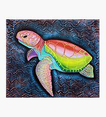 Lámina fotográfica Tortuga marina Ridley de Kemp